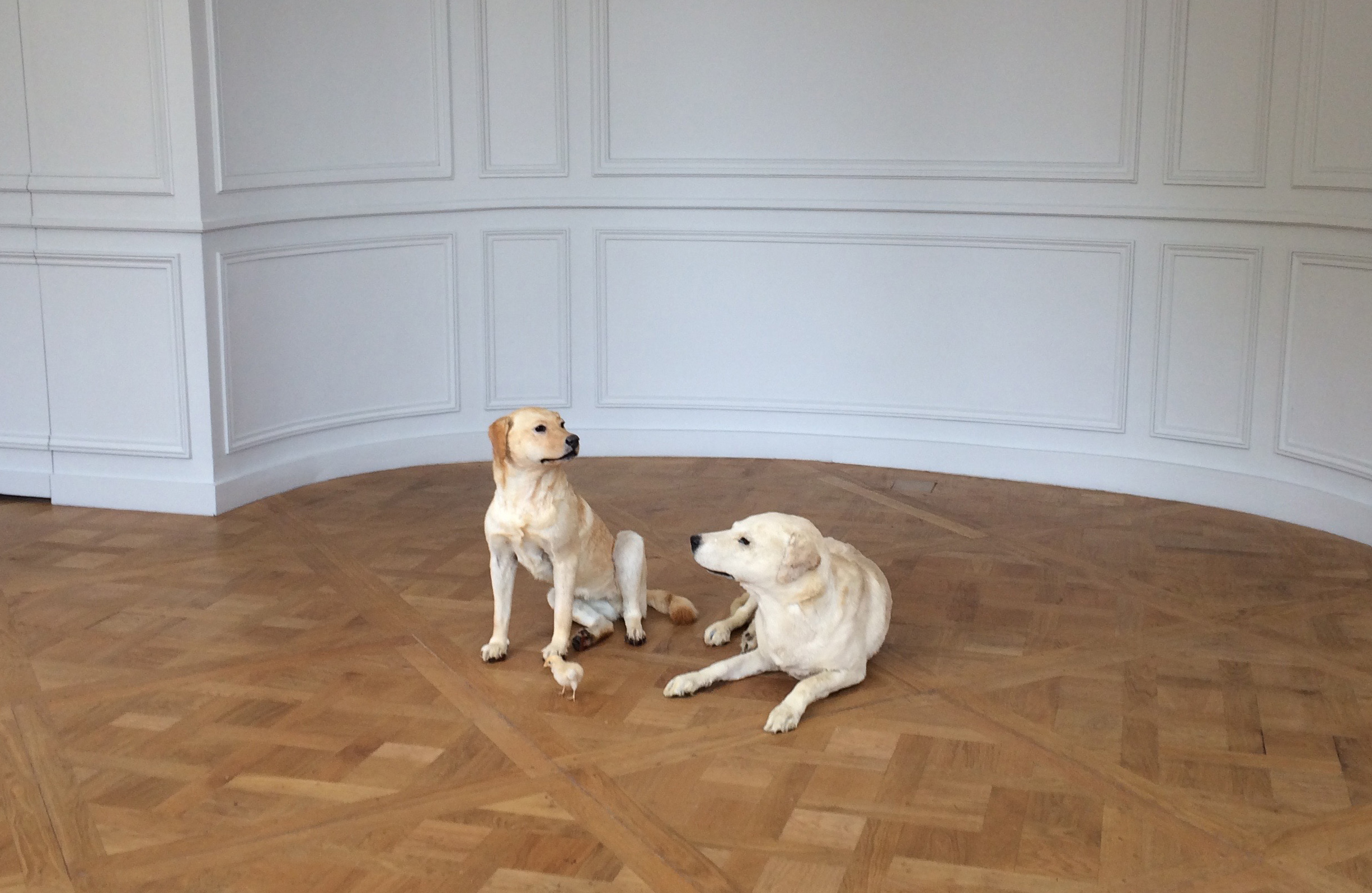 Maurizio Cattelan, Sans titre, 2007, Not Afraid of Love, Monnaie de Paris Octobre 2016