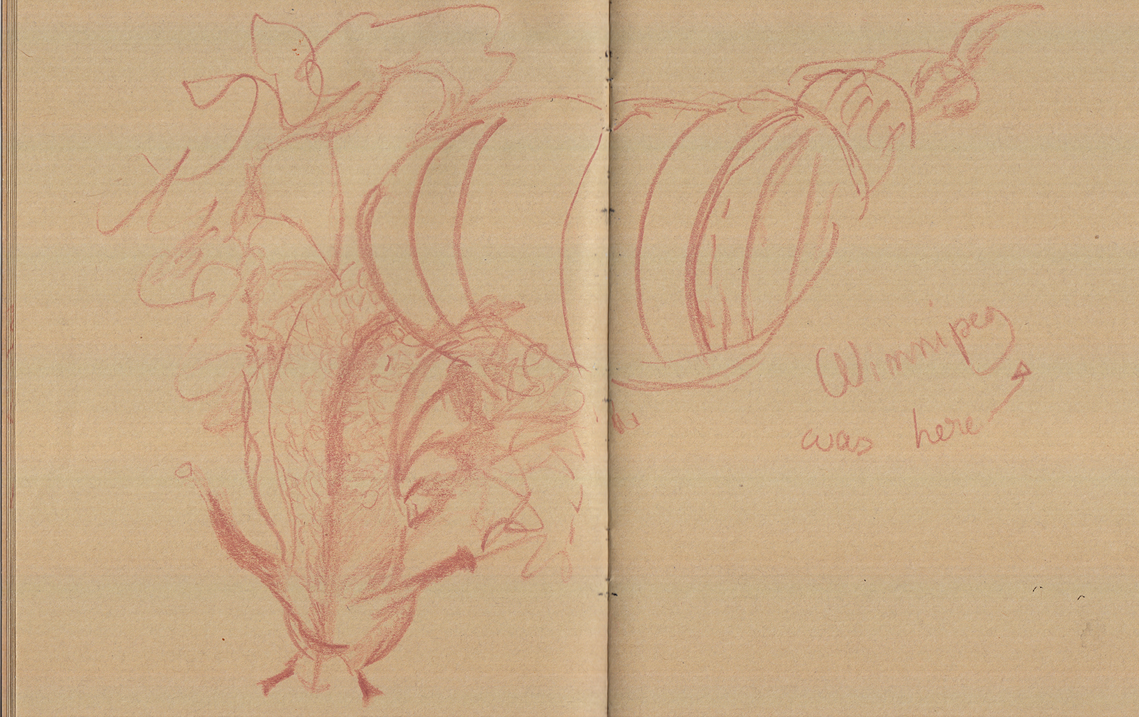 Antonija Livingstone's pet snail Winnipeg climbing up my notebook, Festival Extension Sauvage, June 2017, Château de la Ballue, live-sketching by Araso